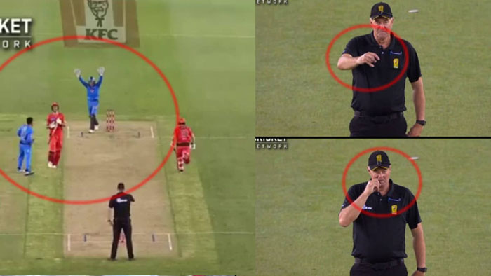 Rashid Khan Busy In Celebrating While Umpire Raises His Finger To Scratch His Nose